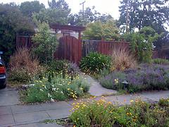 Secret Garden A