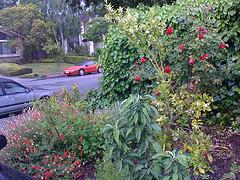 Outside House Å