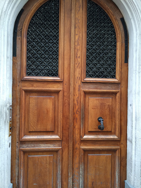 Wood door with hand handle