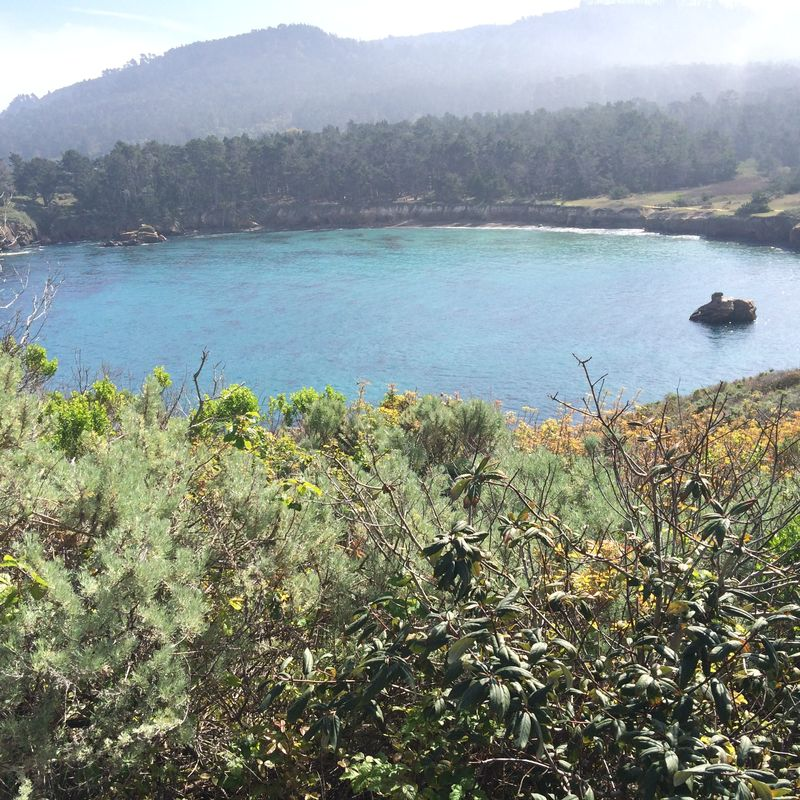 Point Lobos Whaler's Cove