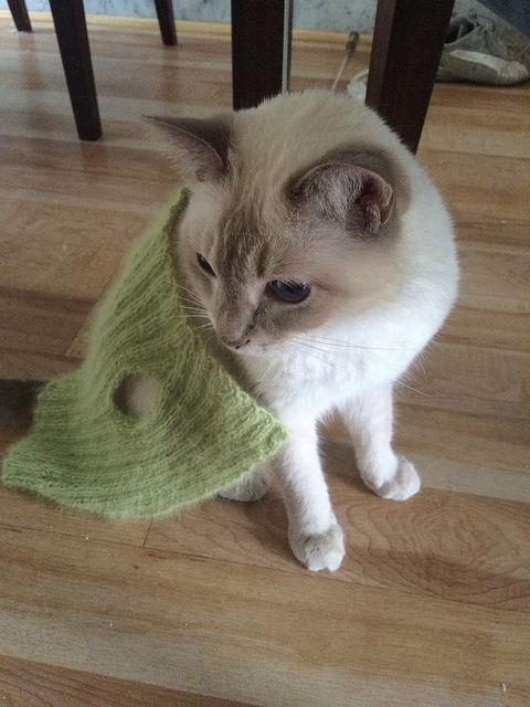 Manju cloak