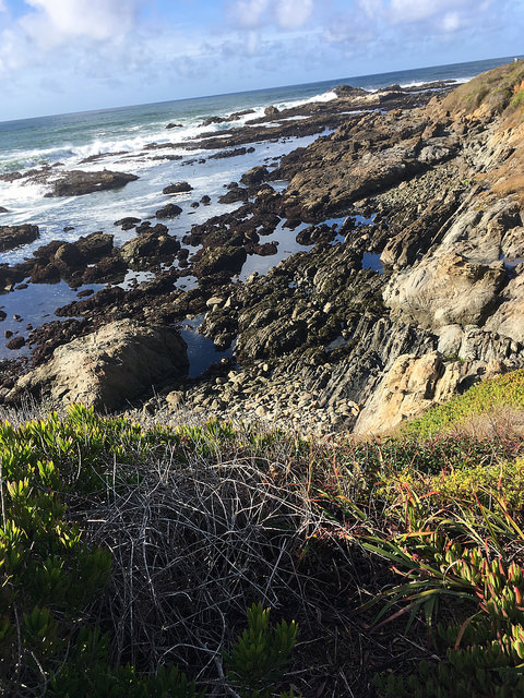 Ocean intro photo