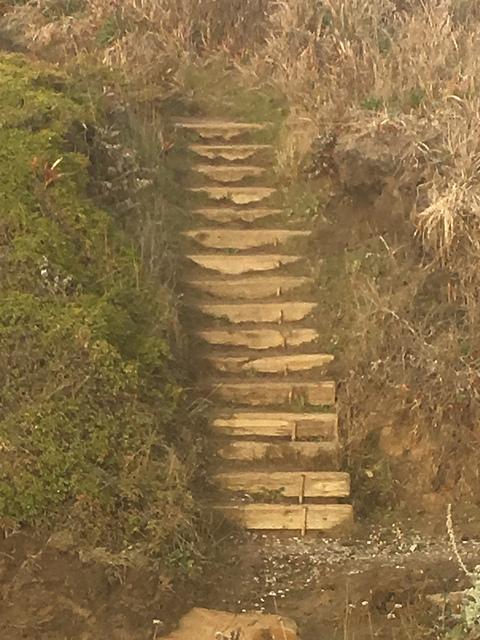 Coastal stairway